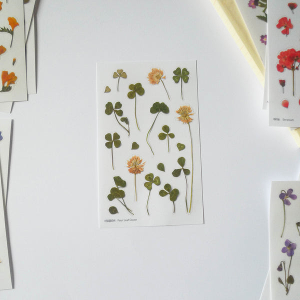 APPREE: Pressed Flower Sticker (Four Leaf Clover)