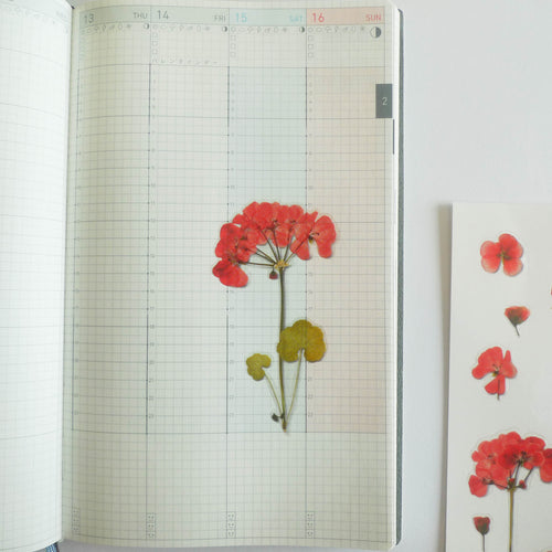 APPREE: Pressed Flower Sticker (Geranium)
