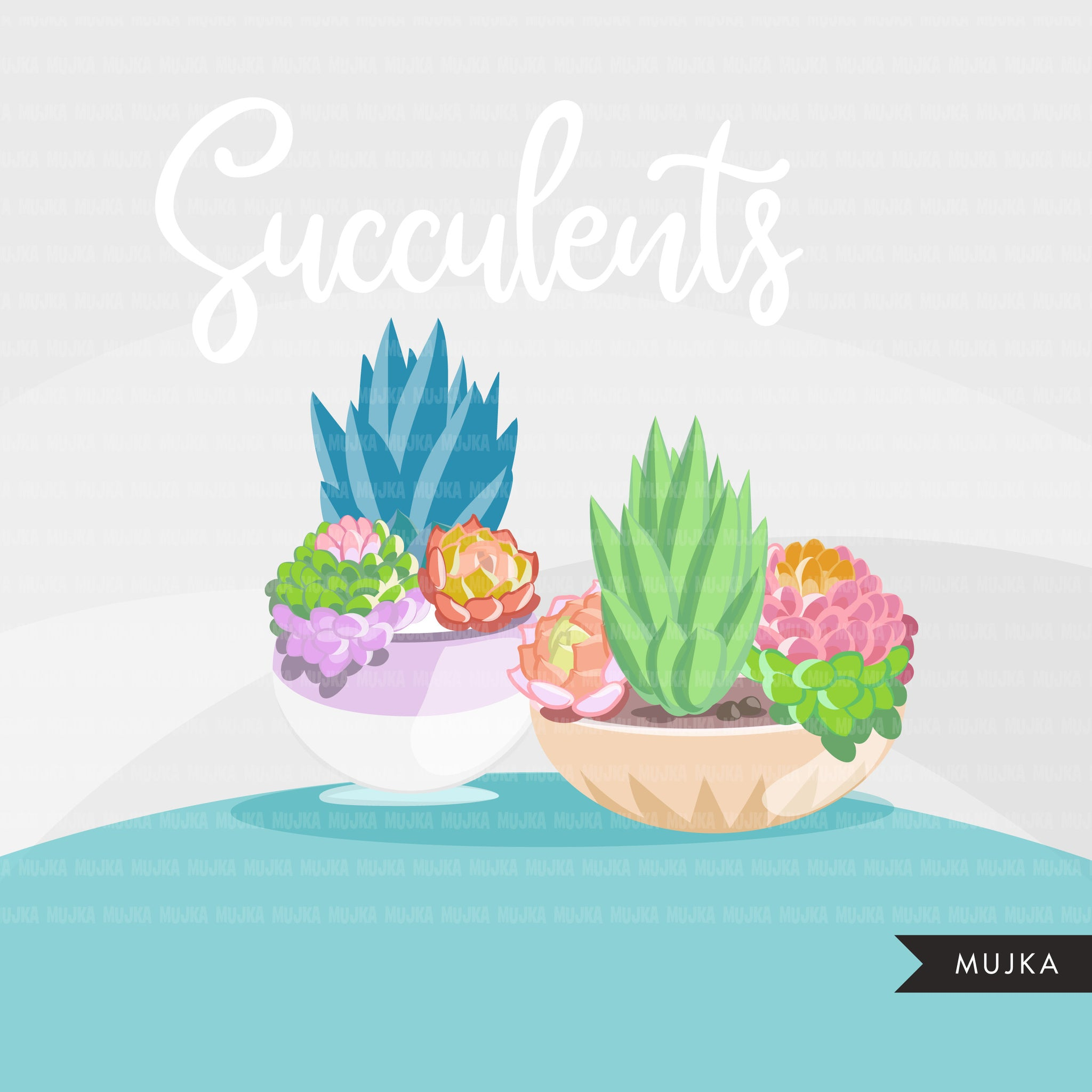 Succulent clipart Bright version, spring summer