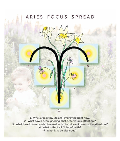 Aries Focus Tarot + Oracle Card Spread