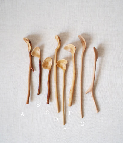 Branch Condiments Spoons [SS]