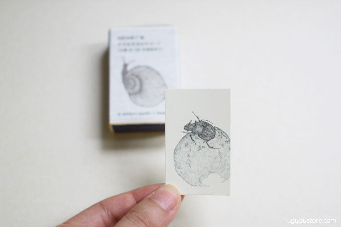 Mariko Tadokoro Mini Cards in Match Box