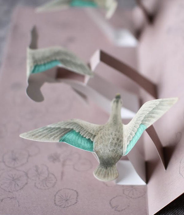 Tobidustry Pop-Up Bird Card {Spot-billed Duck}