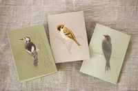 Tobidustry Pop-Up Bird Card {Tree Sparrow}