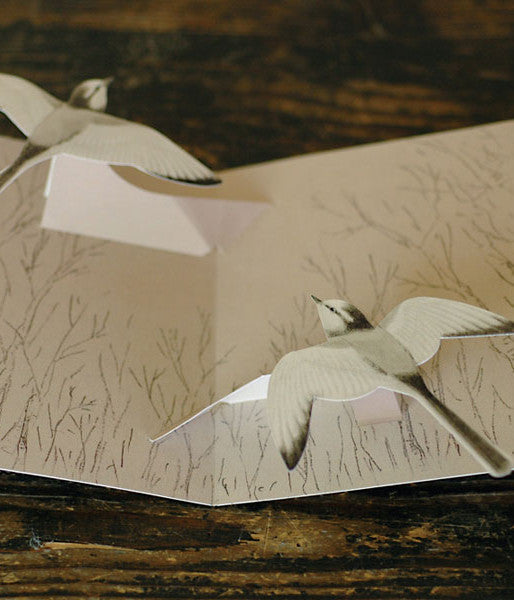 Tobidustry Pop-Up Bird Card {White Wagtail}