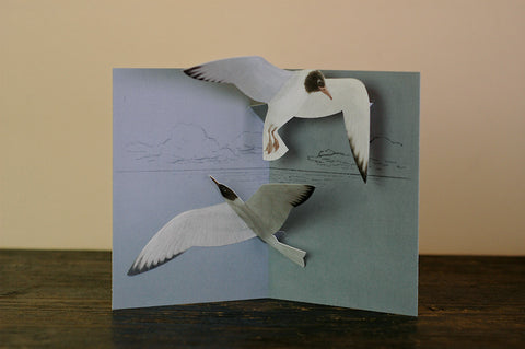 Tobidustry Pop-Up Bird Card {Black-Headed Gull}