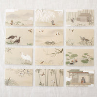 Kotota the Sparrow Mini Note Cards