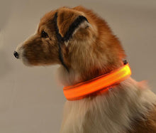 Load image into Gallery viewer, Night Safety Flashing Glow In The Dark Dog Collar