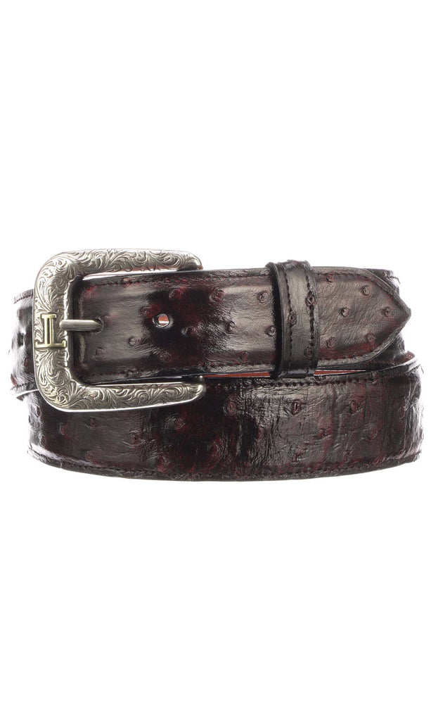 Lucchese W6021 Black Cherry Full Quill Ostrich Mens Belt