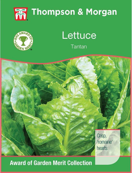 Thompson & Morgan (Uk) Ltd Gardening Lettuce Tantan