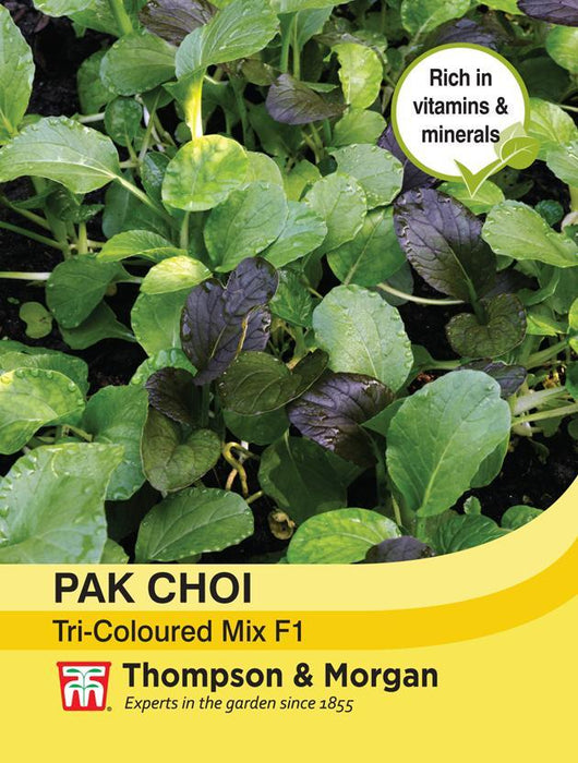 Thompson & Morgan (Uk) Ltd Gardening Chinese Cabbage Pak Choi