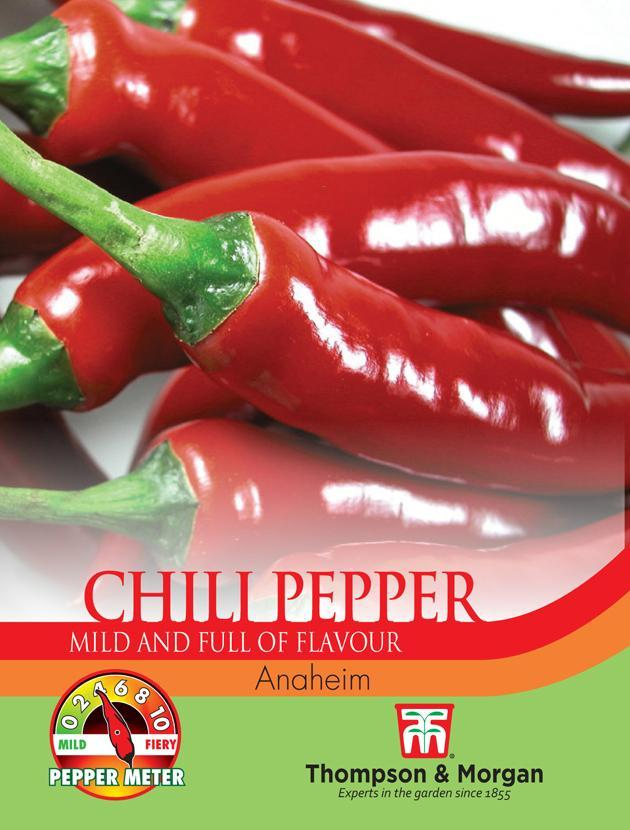Thompson & Morgan (Uk) Ltd Gardening Pepper Chili Anaheim