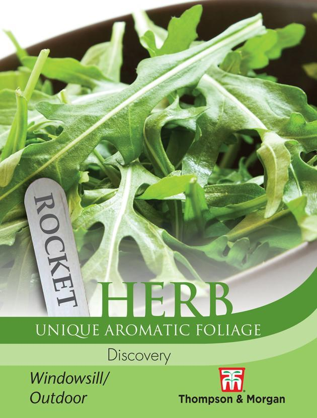 Thompson & Morgan (Uk) Ltd Gardening Herb Rocket Discovery