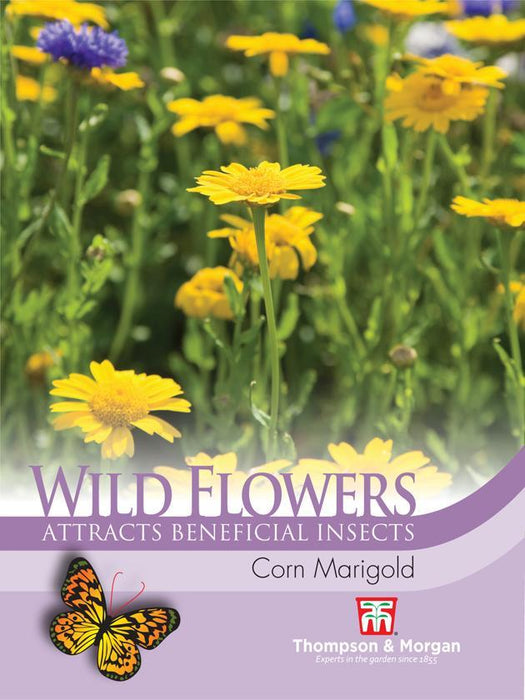 Thompson & Morgan (Uk) Ltd Gardening Wildflower Corn Marigold