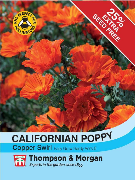Thompson & Morgan (Uk) Ltd Gardening Californian Poppy Copper Swirl