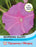 Thompson & Morgan (Uk) Ltd Gardening Morning Glory Candy Pink