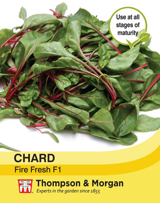 Thompson & Morgan (Uk) Ltd Gardening Chard Fire Fresh