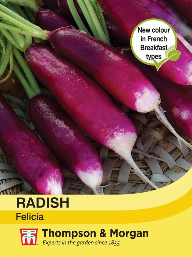 Thompson & Morgan (Uk) Ltd Gardening Radish Felicia