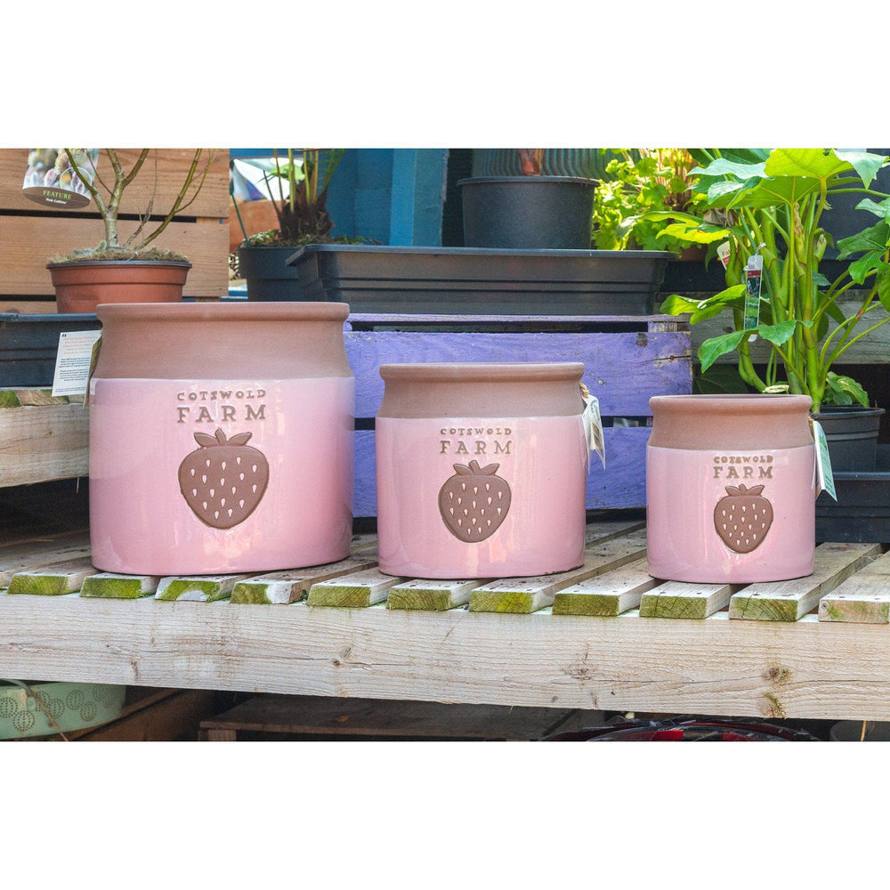 Mid Ulster Garden Centre Gardening Country Farm Style Ceramic Plant Pots In A Strawberry Cream Colour - 3 Sizes