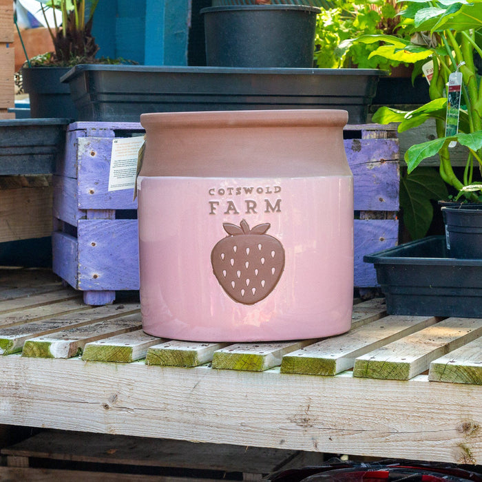 Mid Ulster Garden Centre Gardening Large Country Farm Style Ceramic Plant Pots In A Strawberry Cream Colour - 3 Sizes