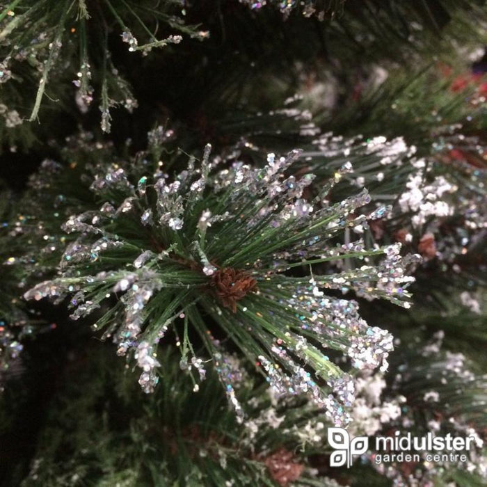Kaemingk Everlands Frosted Finley Pine Christmas Tree 240cm / 8ft - Mid Ulster Garden Centre, Ireland