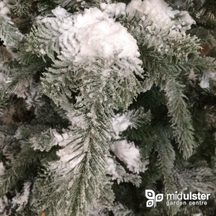 Kaemingk Everlands Frosted Omorika Fir Christmas Tree 240cm / 8ft - Mid Ulster Garden Centre, Ireland