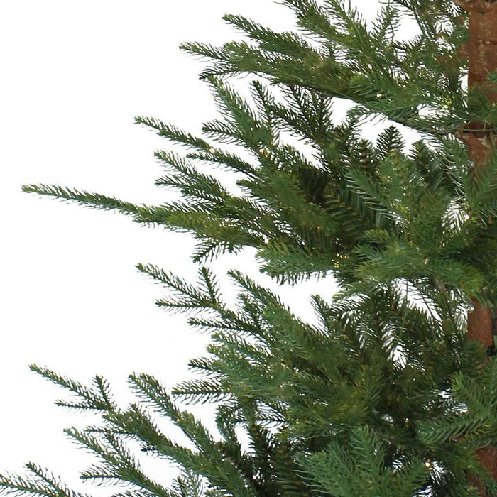 Puleo Aspen Fir 7ft Christmas Tree Detail - Mid Ulster Garden Centre, Ireland