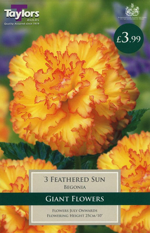 O.A. Taylor & Sons Bulbs Ltd Gardening Beg Feathered Sun Exotic 4-5