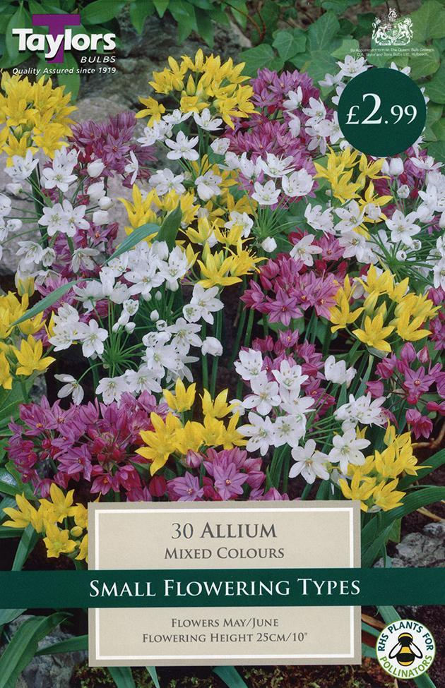 O.A. Taylor & Sons Bulbs Ltd Gardening Allium Mixed 3-5