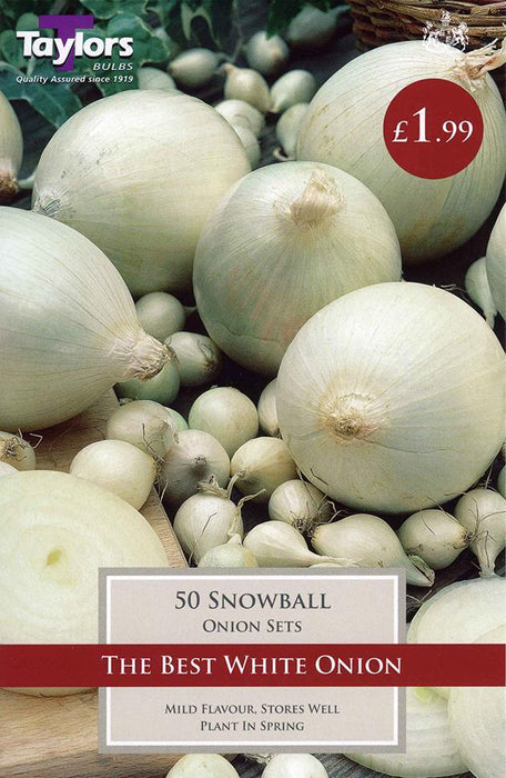 O.A. Taylor & Sons Bulbs Ltd Gardening Onion Snowball x50