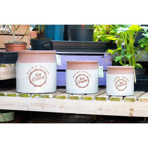 Vintage Ice Cream Churn Style White Plant Pots - 3 Sizes - Mid Ulster Garden Centre, Ireland