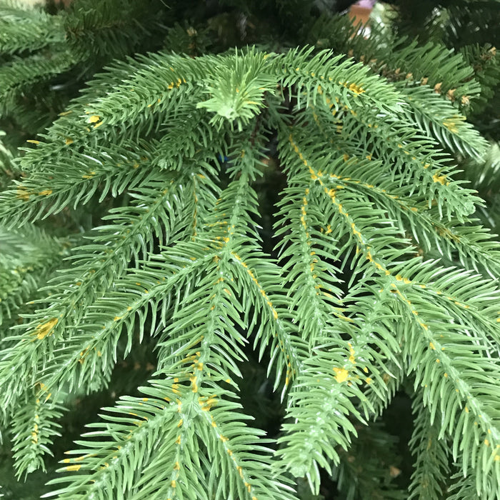 "National Tree Company ""Feel Real"" Monterey Fir Memory-Shape Christmas Tree 225cm / 7.5ft Branch Detail - Mid Ulster Garden Centre, Northern Ireland"