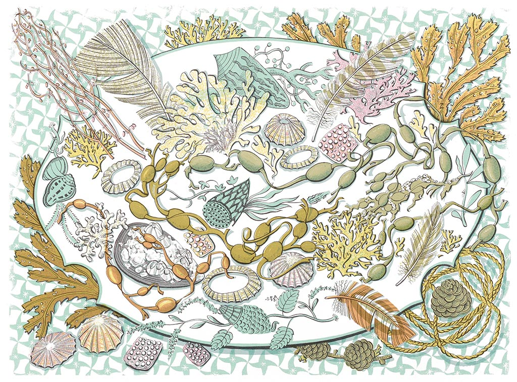 Shell, Seaweed and Feather - Angie Lewin