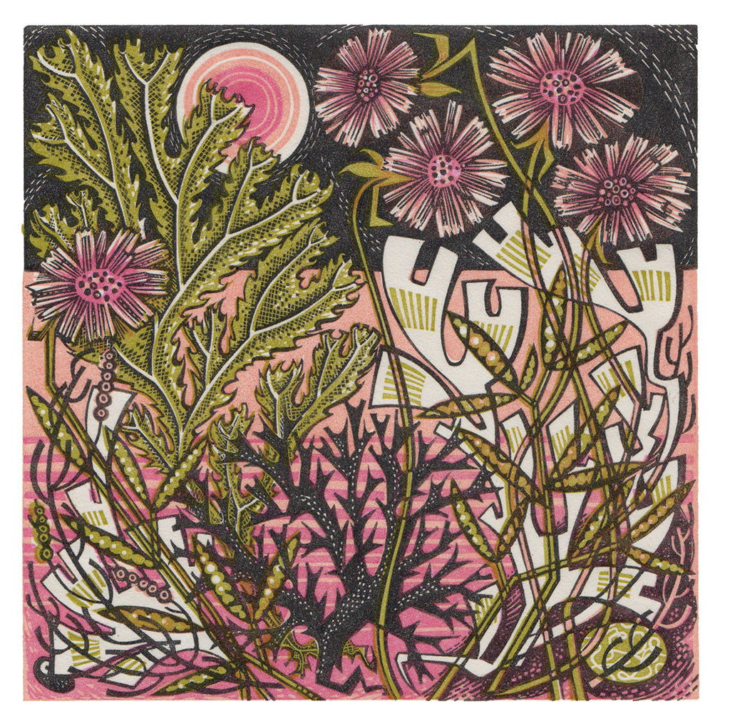 Sea Pinks - Angie Lewin