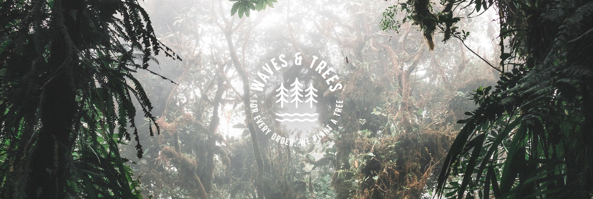 Waves & Trees: The Journey Continues