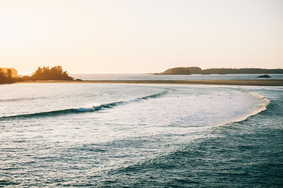 Surfers paddle out into the swell with trees and sandbanks in the background