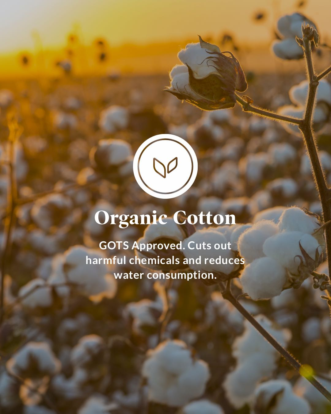 Organic Cotton - GOTS Approved. Cuts out harmful chemicals and reduces water consumption.