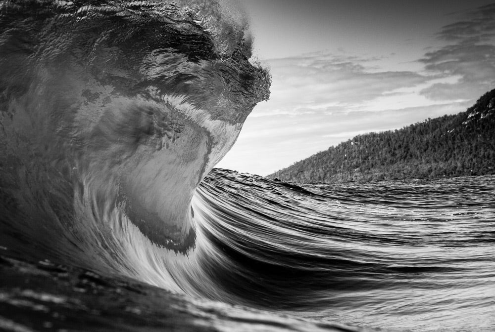 A wave begins to form a barrel with a forest scene enveloping the landscape in the distance.
