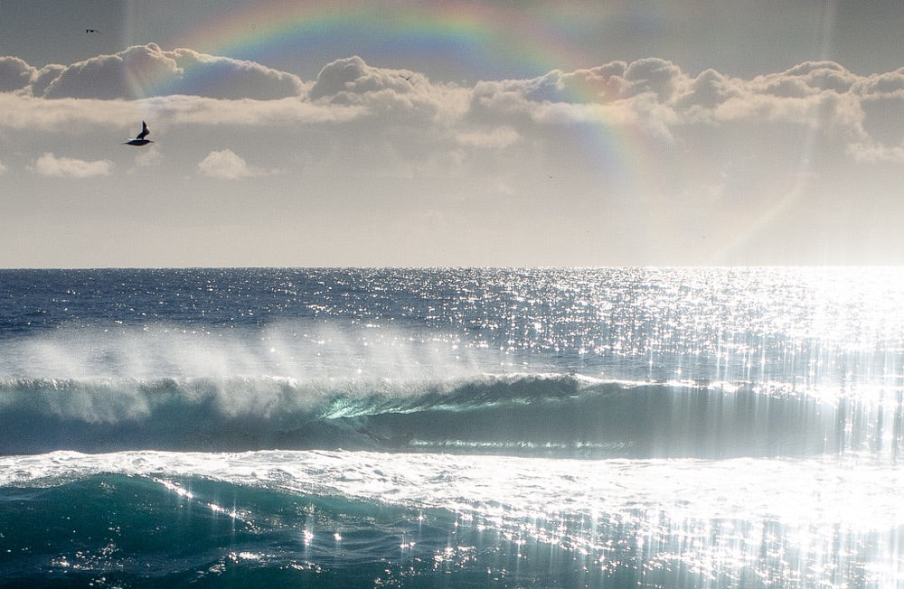 A set of barreling waves roll in as the sun glistens off the water