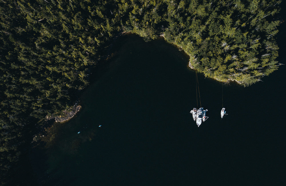 Aerial view of boats tethered together next to dense trees
