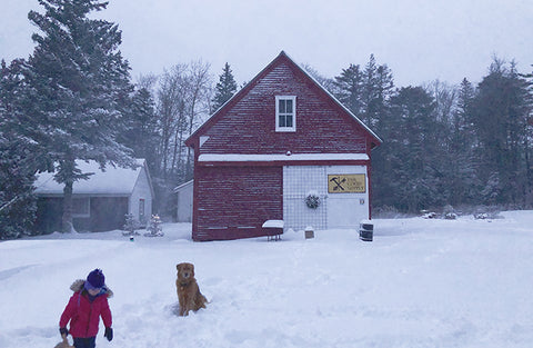 The Good Supply in Pemaquid Maine Midcoast Artisan Store Barn in the Winter