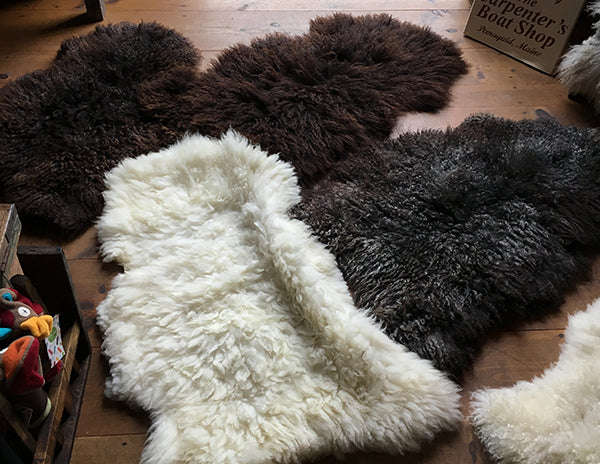 The Good Supply in Pemaquid Maine Midcoast Artisan Store Gotland Sheep Pelt Sheepskins for Sheepstock 2020 Made in USA