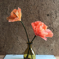 California Poppy in Apricot Chiffon Paper Flower Sculpture Botanical Realism by Flower and Jane Spring Song Pemaquid Maine Midcoast Artisan Store The Good Supply Made in USA