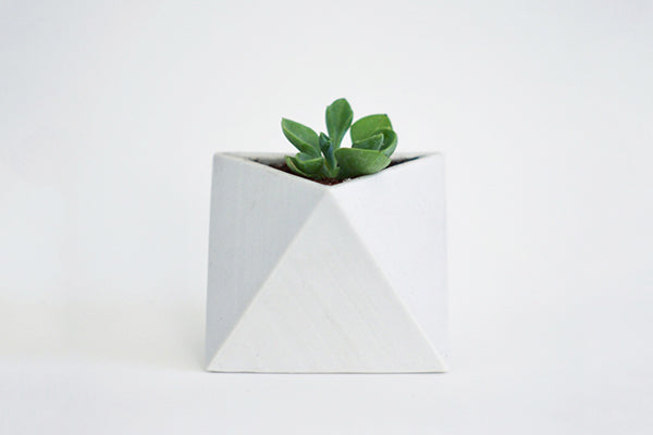 Process Goods Triangle Planter in Slip Casted Porcelain Handmade in Maine USA