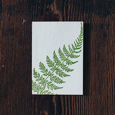 Letterpress Note Cards by Saturn Press are made in Maine, USA, on recycled paper. Curve Fern