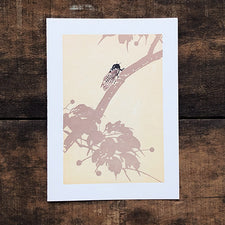 The Good Supply Midcoast Artisan Store Pemaquid Letterpress Cards Saturn Press Made in Maine USA Cicada