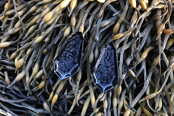 The Good Supply in Pemaquid Maine Enamel Artist Kate Mess Barnacle Tidal Earrings No 3 Charred Barnacle Black Enamel Handmade in USA