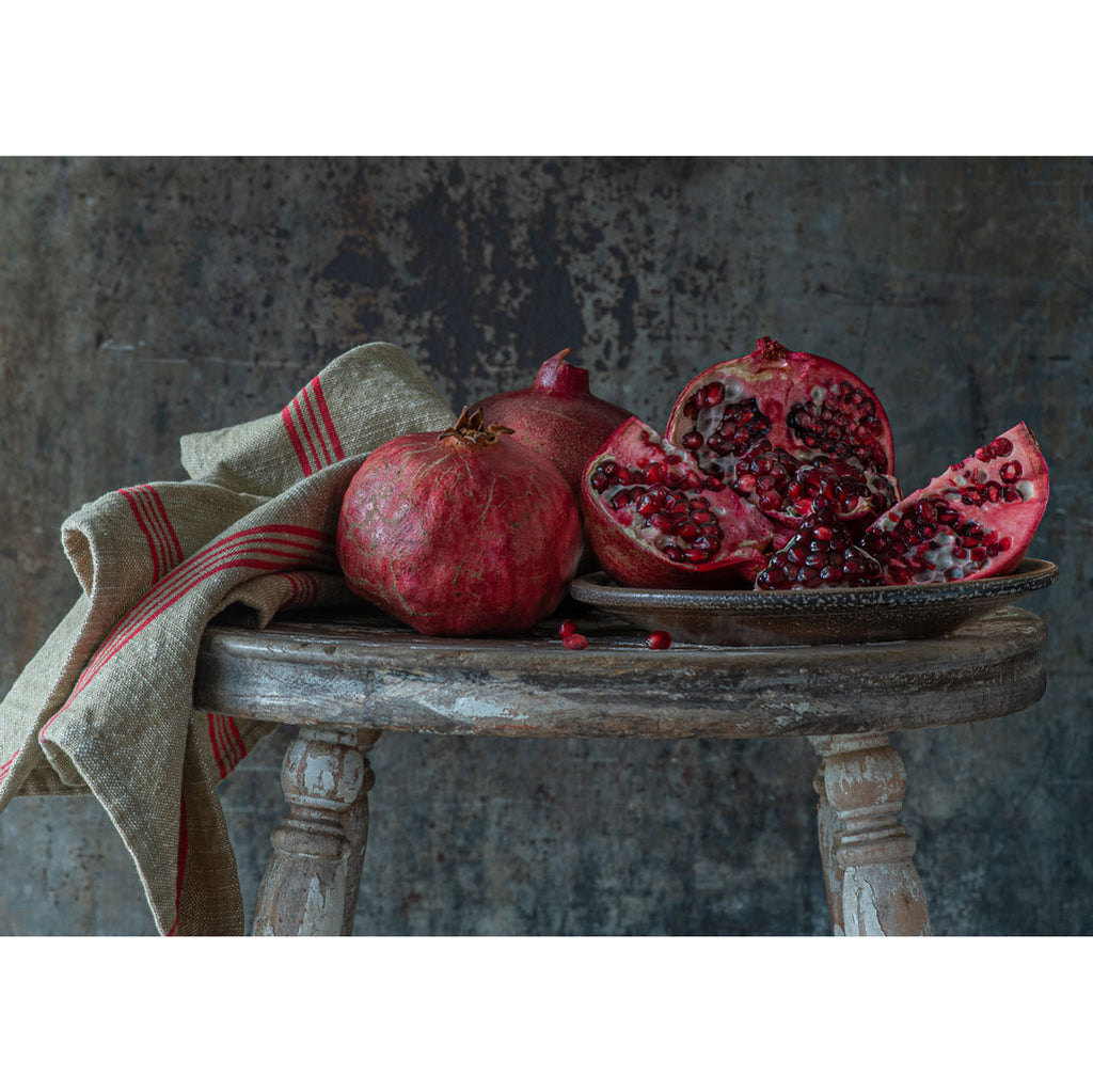 Lynn Karlin's Pomegranate Still Life, Signed & Numbered Print