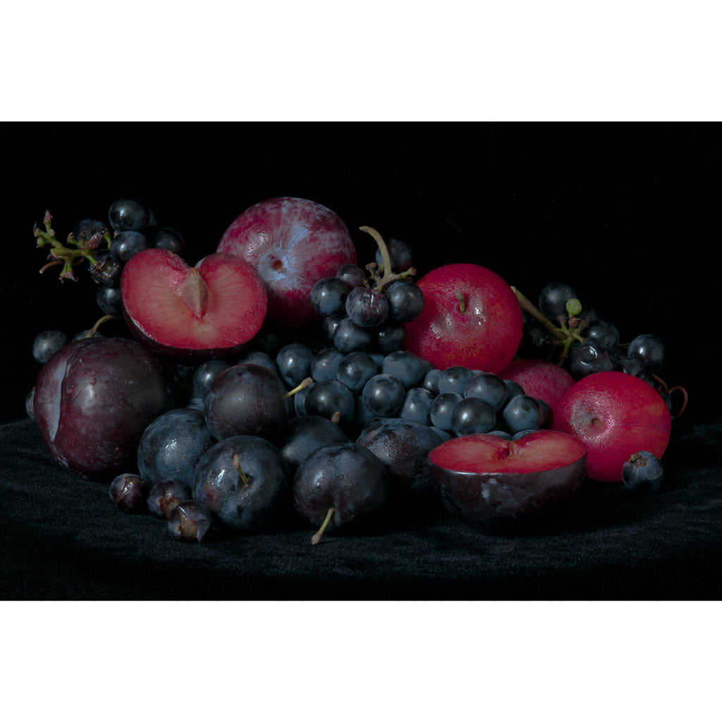 Lynn Karlin's Still Life with Grapes & Plums, Signed & Numbered Print