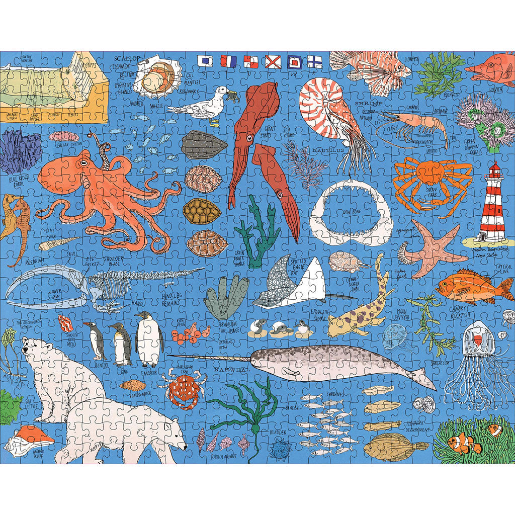 Ocean Anatomy: The Puzzle (500 pieces)